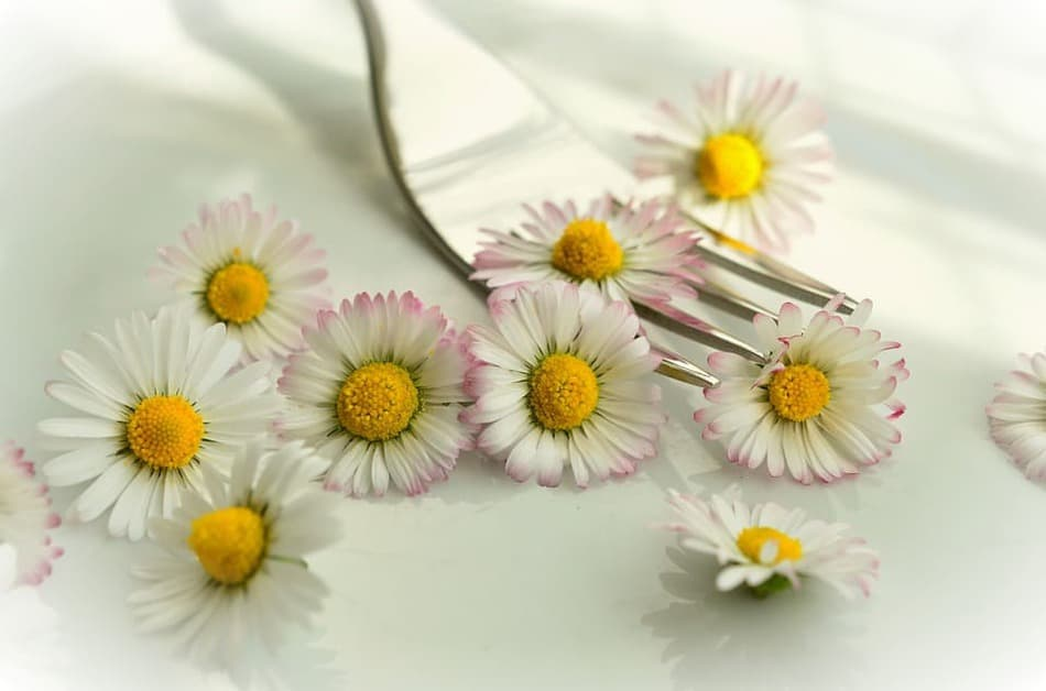 Edible flowers are good
